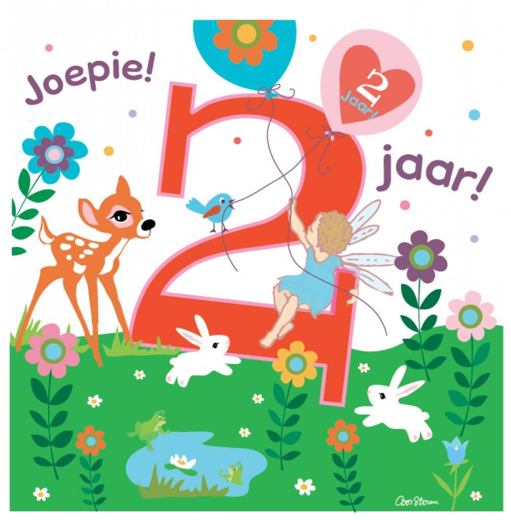 Ambdb wenskaart joepie 2 jaar online babywinkel de for Poppenhuis kind 2 jaar