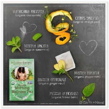 Earth Mama Morning Wellness tea - Ochtendthee voor zwangeren