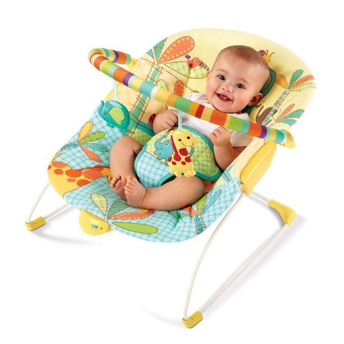 Bright Starts Sunny Side Safari Bouncer