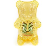 "8"" Gummi Bear Anatomy (Clear Yellow) by Jason Freeny"