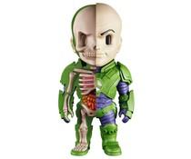 Lex Luthor (XXRAY) by Jason Freeny