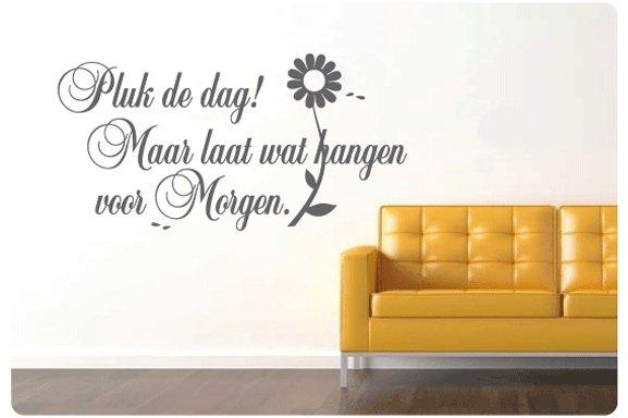 Muurtekst Pluk de dag - Muurstickers en muurteksten van Sweeties.nl
