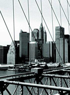 Atlas fotobehang Evolution 1 New York 1055