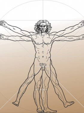 Atlas fotobehang Evolution 4 The Vitruvian Man 1384