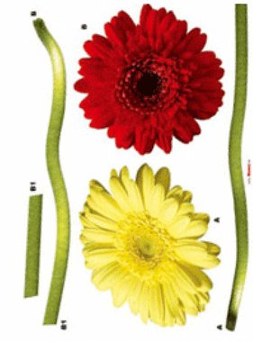 Freestyle muursticker Gerbera 17011