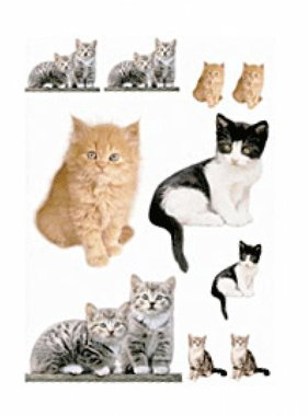 Freestyle muursticker Kitty 17010