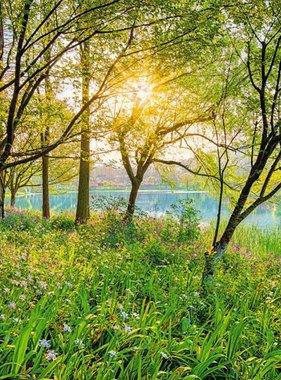 National Geographic fotobehang Spring Lake 8-524