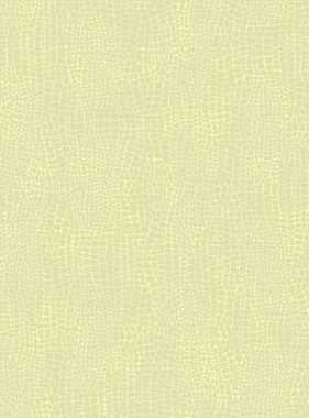 Dutch Wallcoverings behang Opalia 62689