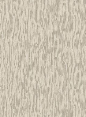 Dutch Wallcoverings behang Structures For Walls 55107
