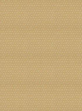 Chivasso behang Giotto CA8246-040