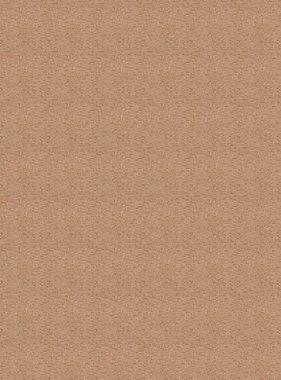 Chivasso behang Goldrush CA8243-060