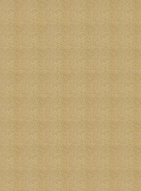 Chivasso behang Goldrush CA8243-041
