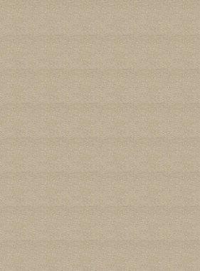 Chivasso behang Goldrush CA8243-040