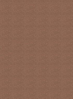 Chivasso behang Goldrush CA8243-020