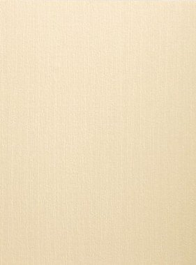 BN Wallcoverings behang Belmont 49542