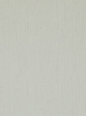 BN Wallcoverings behang Izi 49830