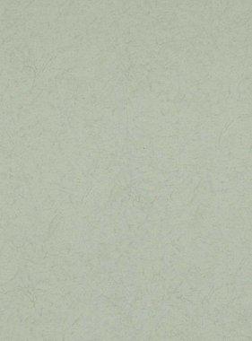 BN Wallcoverings behang Moods 17311