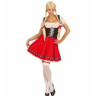 Karnevalskostüm Heidi