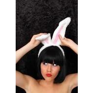 Karnevalszubehör: Kaninchen-ohren
