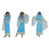 Indiase verkleed jurk Anandi