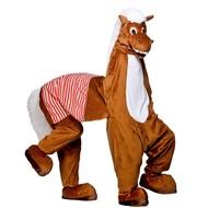 Paardenpak theater