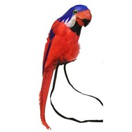 Carnavalsaccessoires: Papegaai