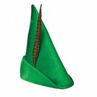 Peter pan hoed met veer