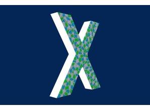 Cristallo Mozaiek pakket Letter X Fris