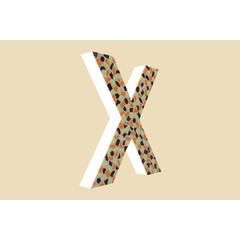 Cristallo Design Warm, Letter X
