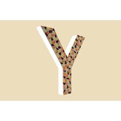 Cristallo Design Warm, Letter Y