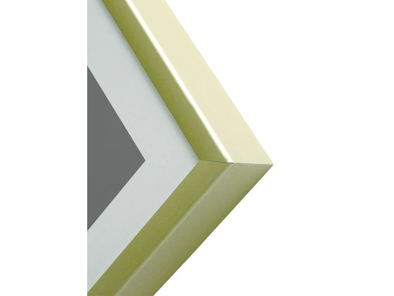 DLF 21x29,7 cm (A4) champagne Pro Line wissellijst  extra solide fotolijsten met een smal profiel.