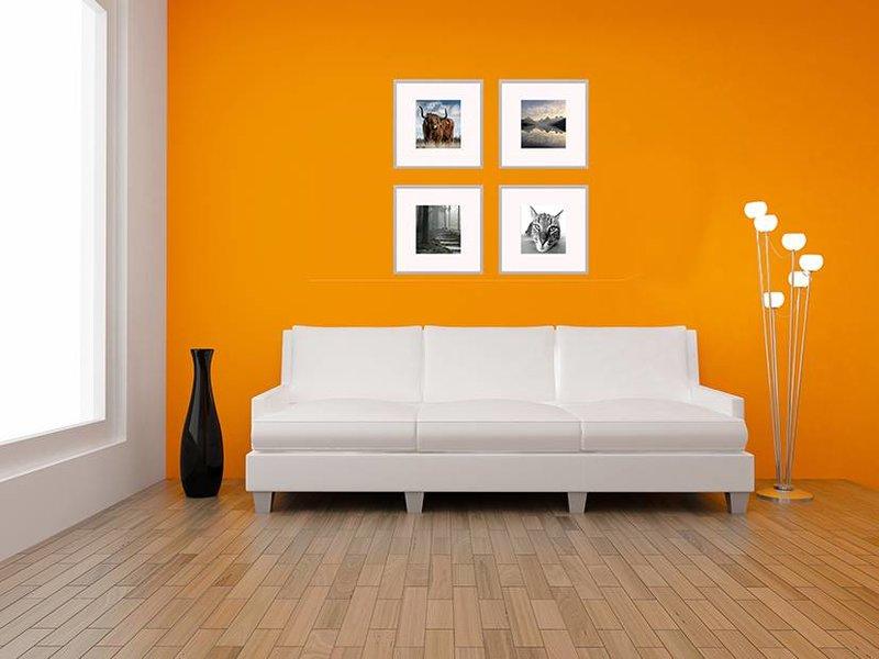 DLF Collage met 40 x 40 cm B-Line aluminium B-Line wissellijsten mat zilver, met extra voordeel