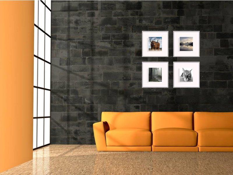 DLF Collage met 40 x 40 cm D-Line aluminium D-Line wissellijsten mat zilver, met extra voordeel