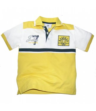Pointer Polo
