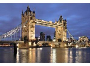Engelse Ltd ingeschreven in Nederland / inclusief fiscale begeleiding / BTW en KvK nummer
