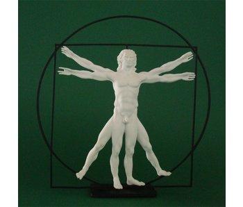 Mouseion Der Mann, der Vitruvië - Weiß