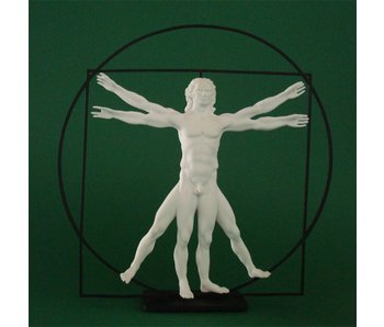 Mouseion The Vitruvian Man - white colored