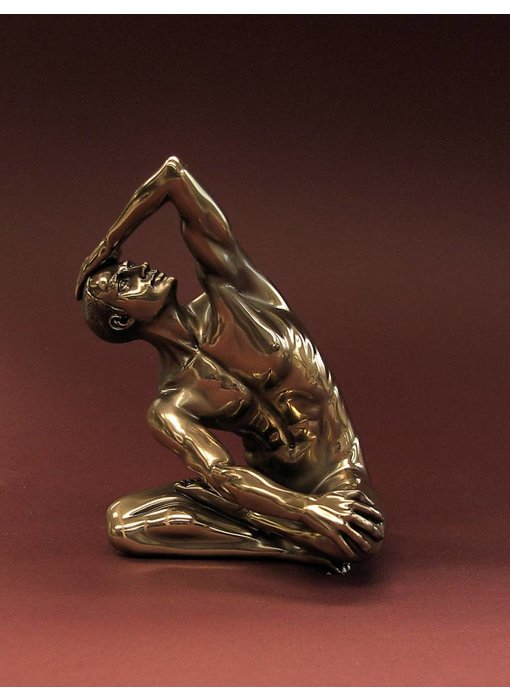 BodyTalk Mannelijk naakt, trainende bodybuilder - M
