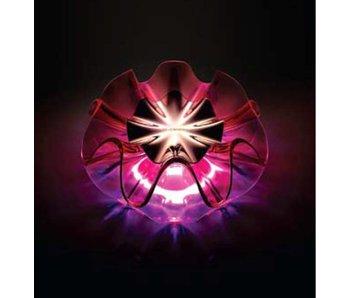 QisDesign Flamenca LED Tischlamp - ROSA