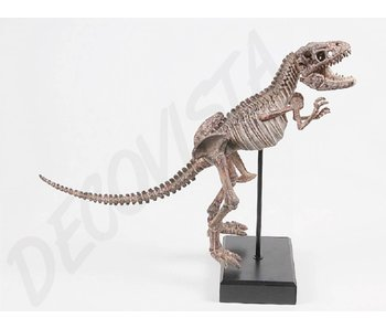 Baroque House of Classics Tyrrannosaurus Rex esqueleto de dinosaurio