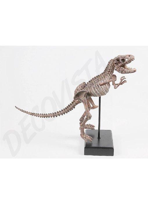Baroque House of Classics Dinosaurus skelet Tyrannosaurus Rex, raptor