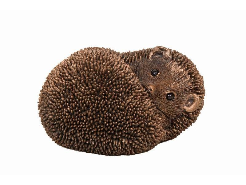 Frith Resting hedgehog Spike by Thomas Meadows