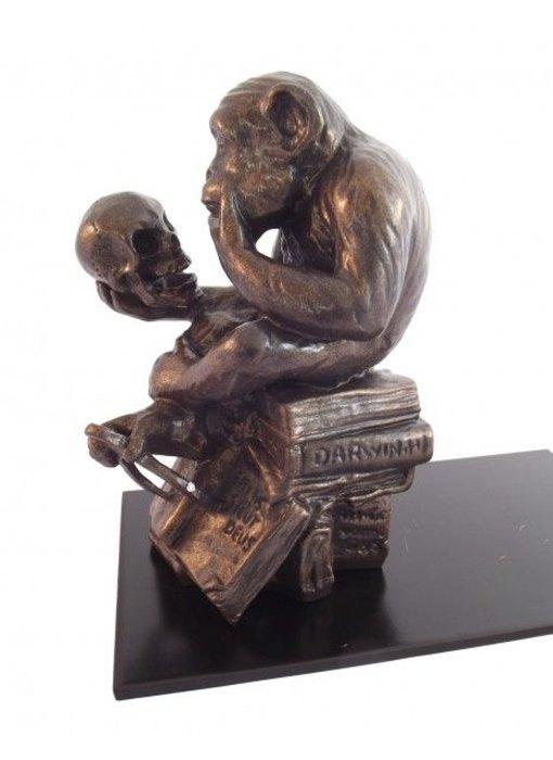 Mouseion Boekensteun Aap met schedel  18,5 cm