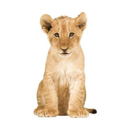 KEK Amsterdam Muursticker XL leeuw vinyl bruin 70x115cm, Safari Friends Lion cub XL