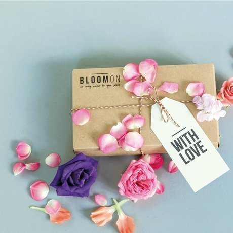 Bloomon Giftcard in cadeauverpakking t.w.v. 25,-