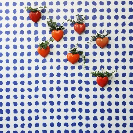 NLXL-Paola Navone Behang Blue Dots blauw 900x49cm
