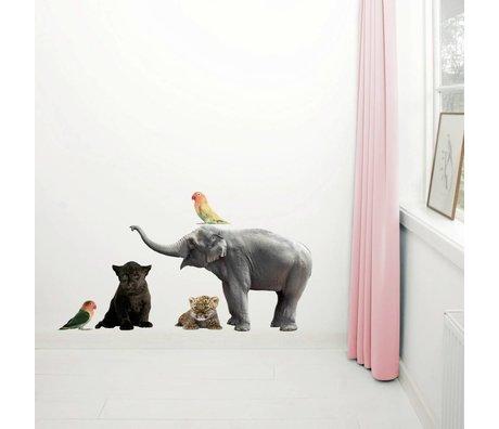 KEK Amsterdam Muursticker set vinyl multicolour bruin divers afm.,Safari Friends set 3