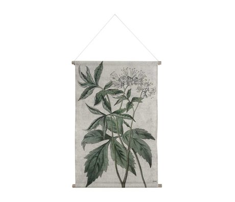HK-living School Poster Botanical printed multicolor cotton wood 85x59,5x2,5cm