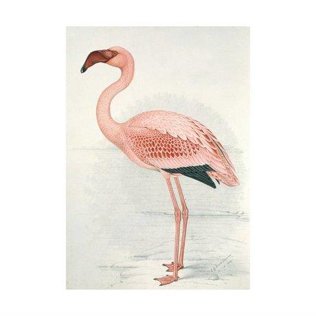 IXXI Wanddecoratie Flamingo Finch-Davis large multicolour papier 100x140cm