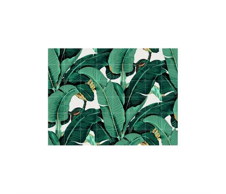 IXXI Wanddekoration Banana Leaf Medium Multicolor Papier 160x120cm
